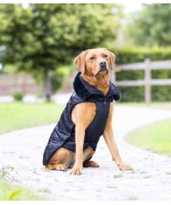 Eskadron-Platinum-2018-Hundejacke, Eskadron Platinum 2018 Hund